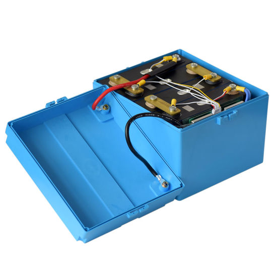 Deep Cycle Long Life 12V 100ah LiFePO4 Battery Pack with BMS