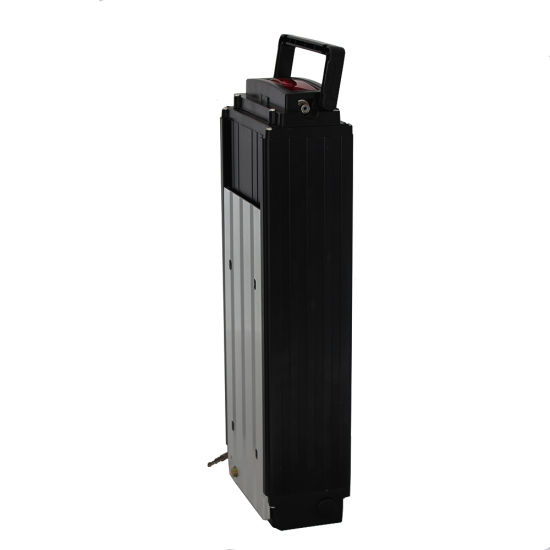 48V 20ah Li-ion Battery for Electric Bicycle with LED Light