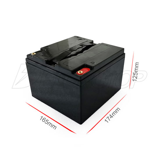 Customized 12V 25ah Lithium Iron Phosphate Rechargeable LiFePO4 Battery Pack Build with Lead Acid Battery Case