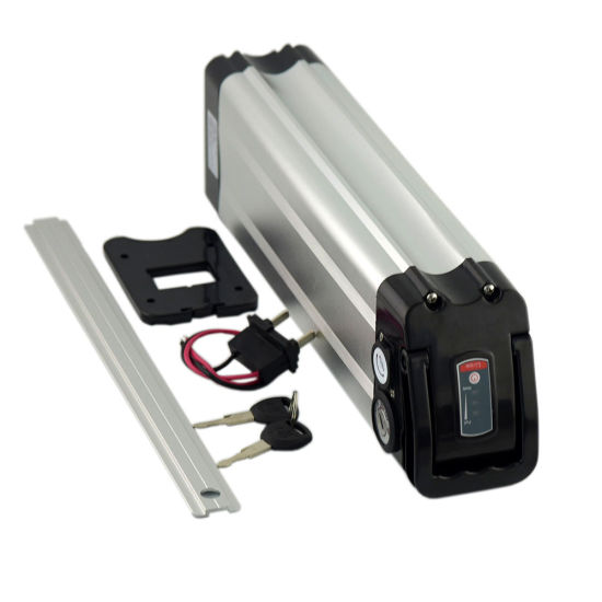 36V 10ah Lithium Ion Battery with Charger for 500W Motor Bike