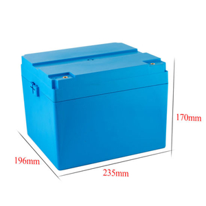 Lithium LiFePO4 Battery 12V for Electric Vehicle