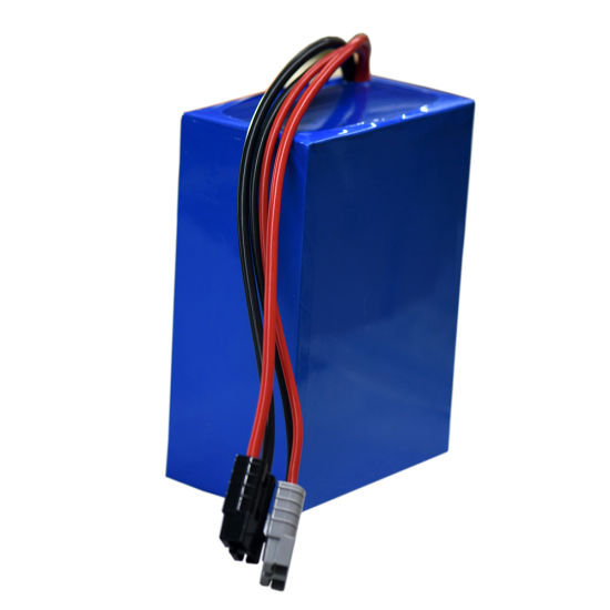 Battery Pack 12.8 Volt Lithium Batterie LiFePO4 12V 50ah USB Battery