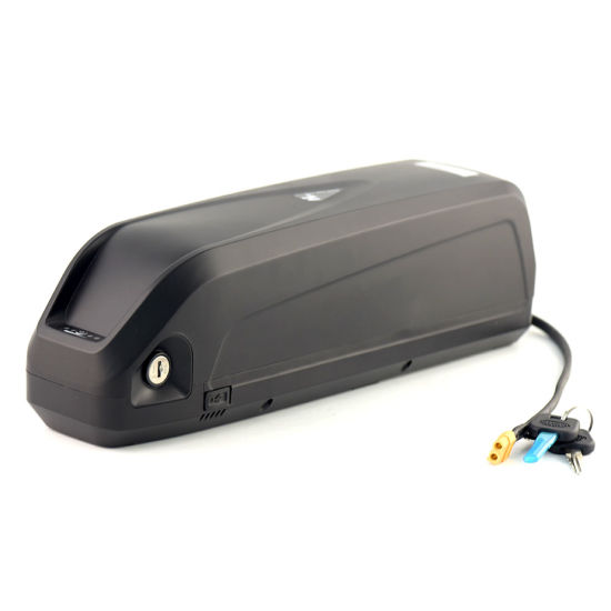 48V 10ah 18650 Power Battery with USB for Ebike